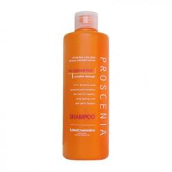 Шампунь для окрашенных волос Lebel Proscenia Shampoo 300 мл 1613лп