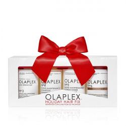 Подарочный набор Olaplex No.3-4-5-6 Система ухода и защиты волос Olaplex Holiday Kit 2020 4x100 мл 20140656