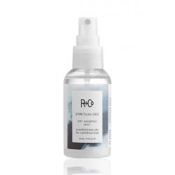 Жидкий сухой шампунь R+Co Экзорцист Spiritualized Dry Shampoo Mist 50 мл R1SPSPR01A1